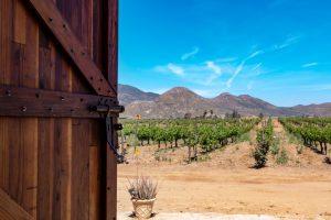 Iniciativa del PAN busca promover el turismo rural